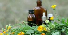 Herbal tinctures that help in weight loss and  fight cellulite