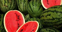 The wonderful world of watermelons