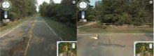 Google Street View car hits baby deer