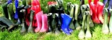 Where to buy colourful wellington boots