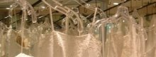Where to Go For Plus Size Wedding Dresses in Newcastle Upon Tyne
