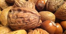 Eating nuts may be the elixir to a longer and healthier life