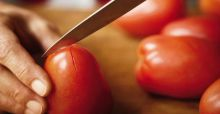 Best tomatoes to grow