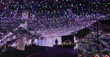 Craziest Christmas light decorations - Photo Gallery