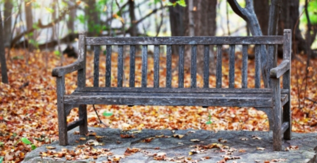 Tremendous Where To Buy A Plastic Garden Bench With Storage In The Uk Ibusinesslaw Wood Chair Design Ideas Ibusinesslaworg