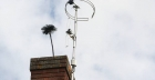 Keep your house safe with regular chimney sweeping
