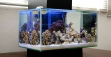 Your guide to Fluval Aquariums