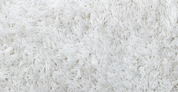 How To Freshen Up Your Carpet