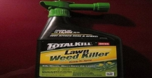 Basic tips on how to use a domestic weed killer safely