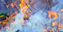 Tips for Filing a Claim on Your Fire Insurance Coverage
