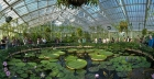 Kew Gardens Jobs: Finding work at the Royal Botanic Gardens