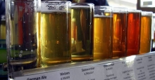 Professional beer taster - probably the best job in the world