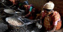 Cashew Nut Workers Rights Stamped On by Unfair Trading