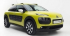 Introducing the Citroen C4 Cactus 2014