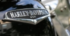 Looking to buy a Harley Davidson Sportster online?