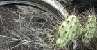 How to Fix a Bicycle Puncture