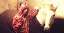 N-Dubz Dappy kicked by horse: Dappy in hospital, horse to win Brit Award?