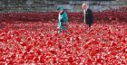 Queen Elizabeth pays respects at Tower of London Poppy Garden