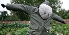 Man found dead in Argentina after having sex with a scarecrow