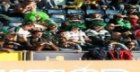 A Guide to Irish Rugby Players at the World cup 2011