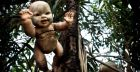Dolls Island in Mexico or 'Isla de las Munecas' | Photo Gallery