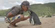 Dindim the penguin returns every year to visit his human best friend