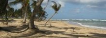 We look for cheap holidays to Barbados at 2010 prices