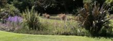 Holiday Parks in or near Bournemouth
